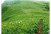 キンバイの谷