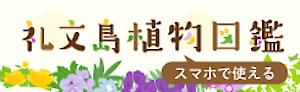 礼文島植物図鑑